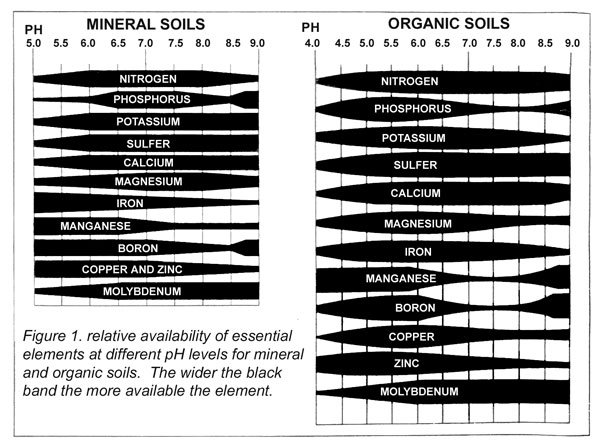 MINERAL SOILS AND ORGANIC SOILS